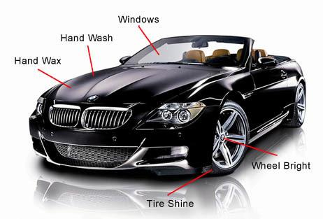 Auto Detailing Services in Tampa Florida - Auto Paint Guard