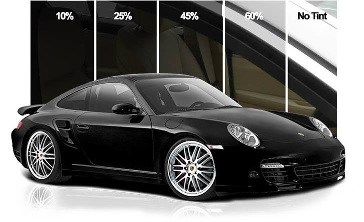 Window Tinting Service in Tampa Florida - Auto Paint Guard